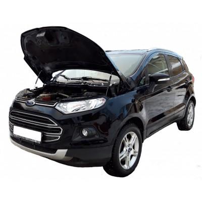 Амортизаторы упоры капота Ford EcoSport 2014-