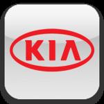 Упоры капота для Kia