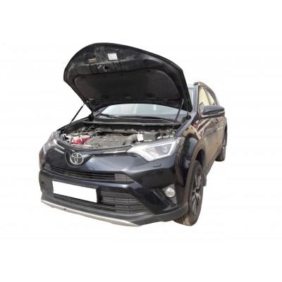 Амортизаторы капота Toyota Rav 4 CA40 2012-19