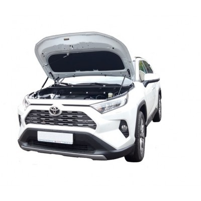 Амортизаторы капота Toyota Rav 4 XA50 2018-